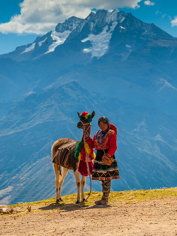 Llama with girl, Sacred Valley